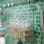 Элементы оформления интерьера на кухне