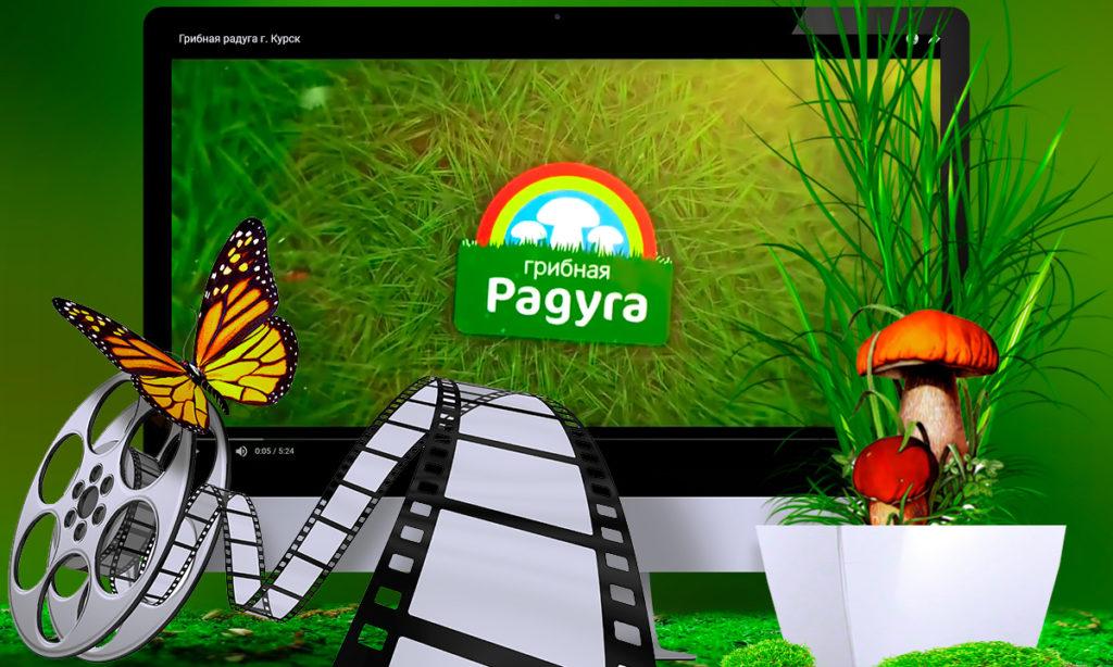 Рекламный видеоролик для компании Грибная Радуга